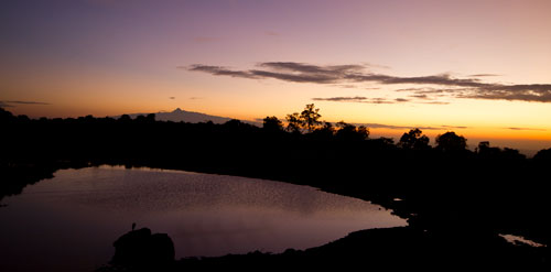 sunrise over water hole with bird on rock in foreground and Mount Kenya in background.