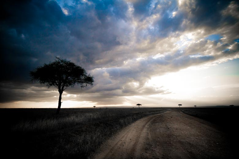 Masai Mara road with trees and clouds